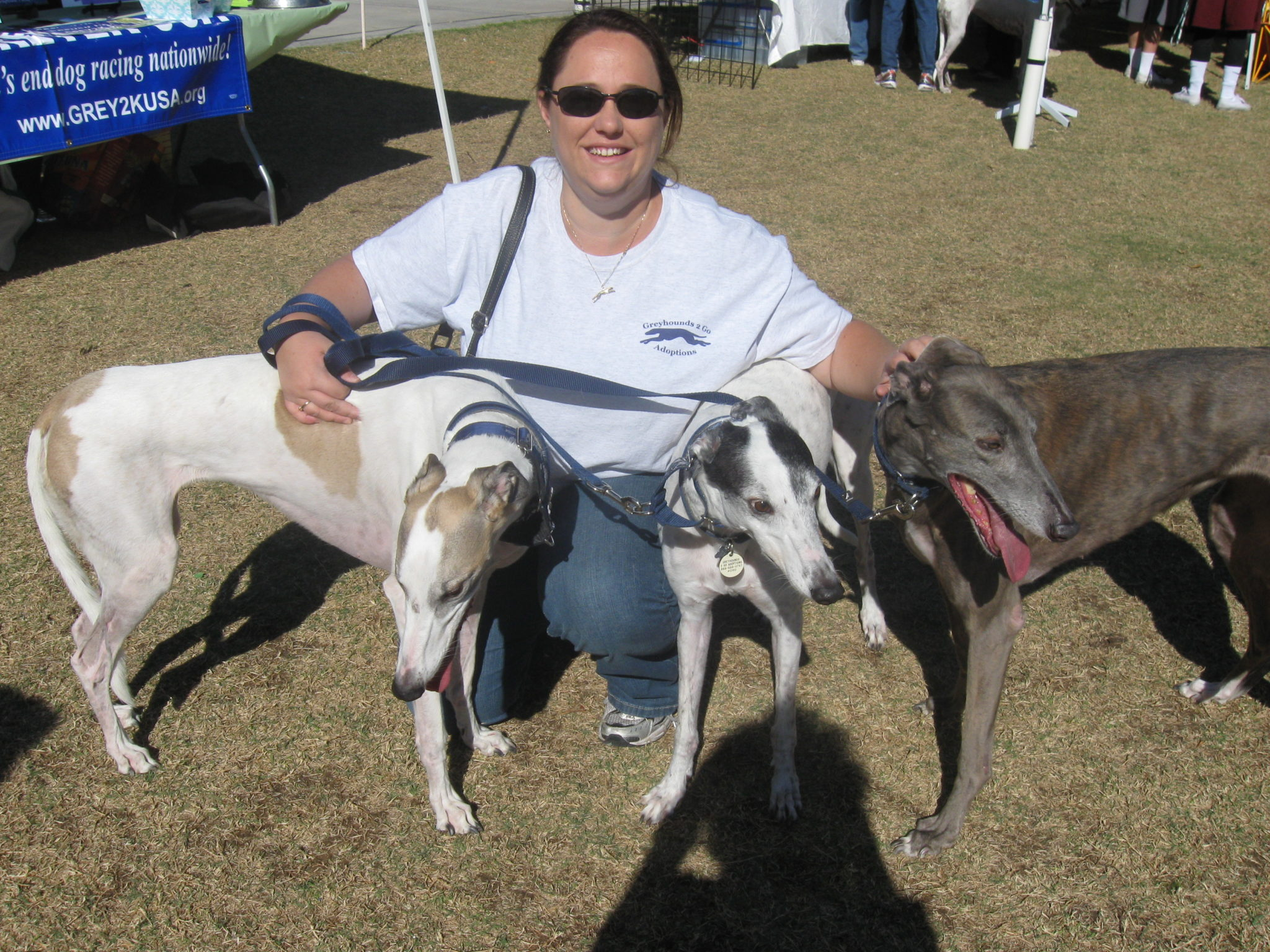 Hugs to Greyhounds-2-Go