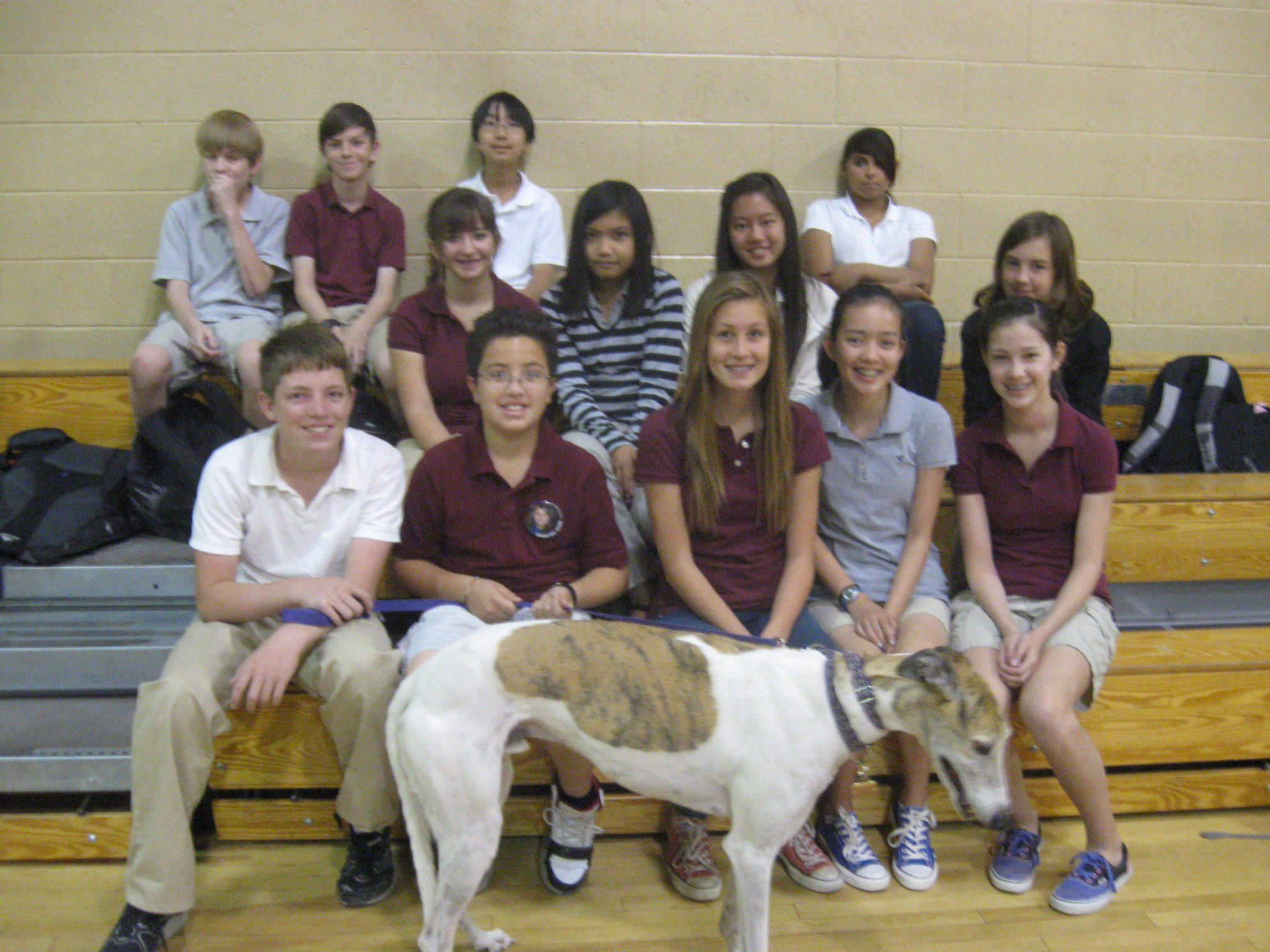 7th graders meet Jett greyhound