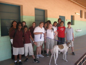 Tucson greyhound Jett visits school